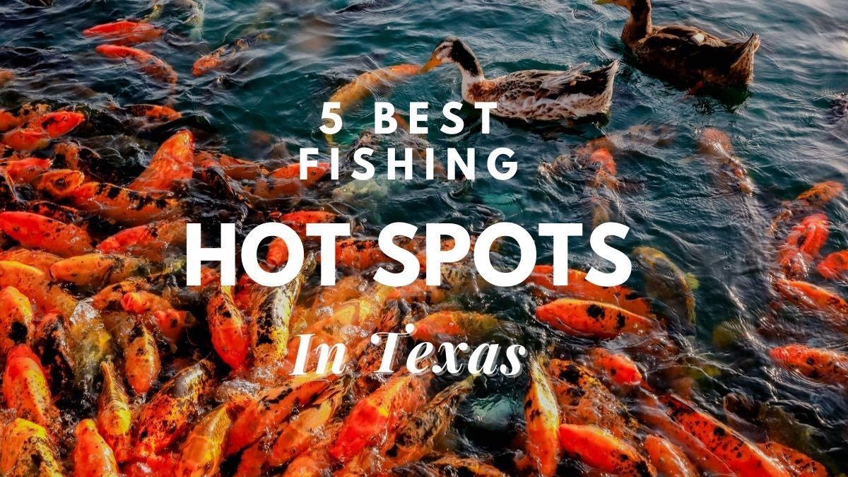 [5 best] fishing hot spots in texas