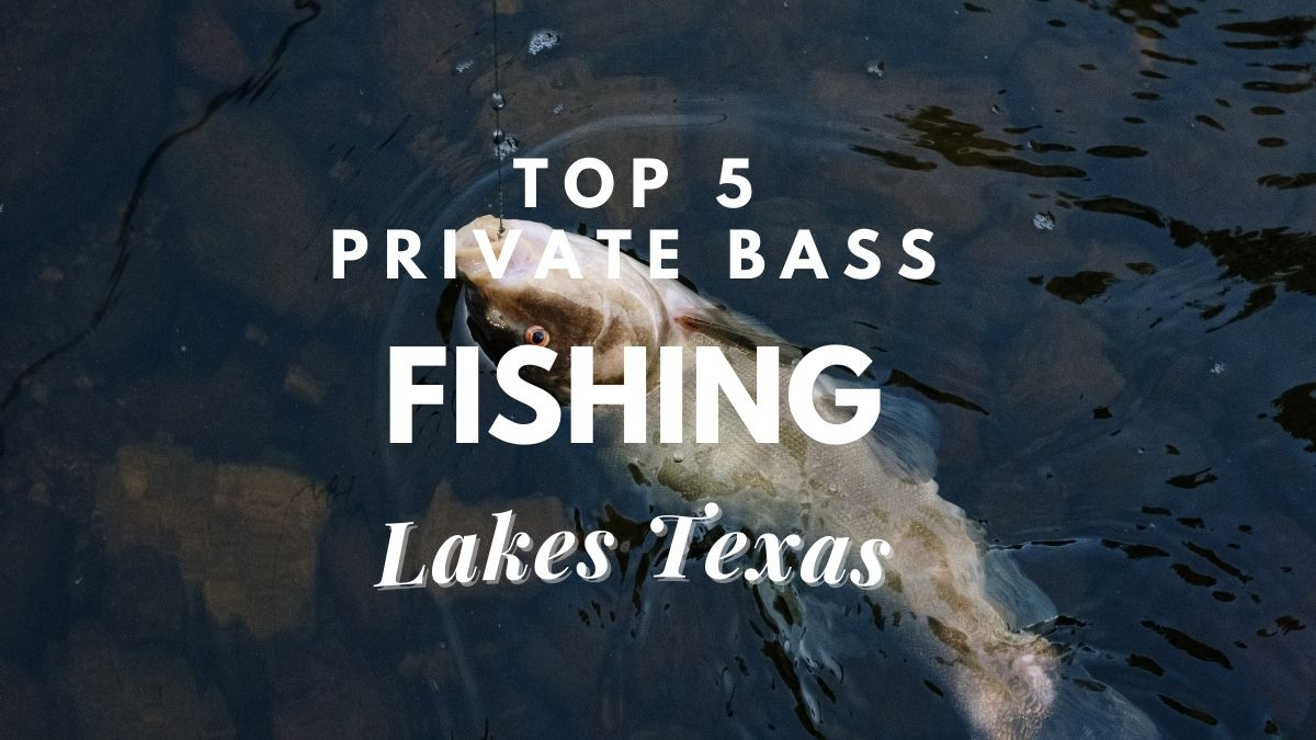[top 5] private bass fishing lakes texas