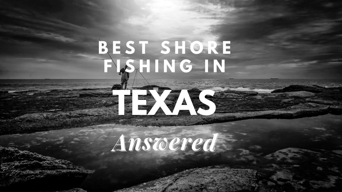 best shore fishing in texas [answered]