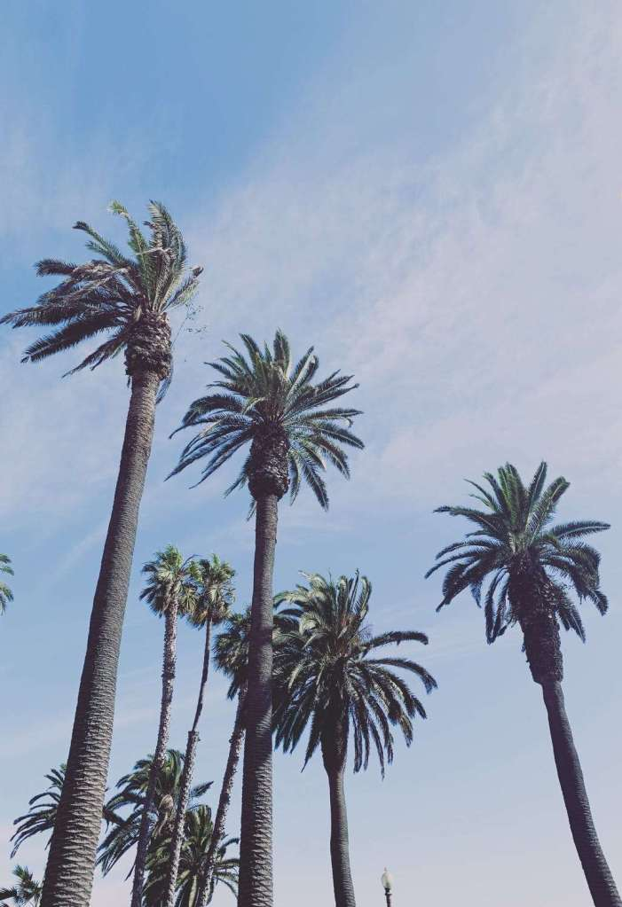 Things to do in California Anaheim