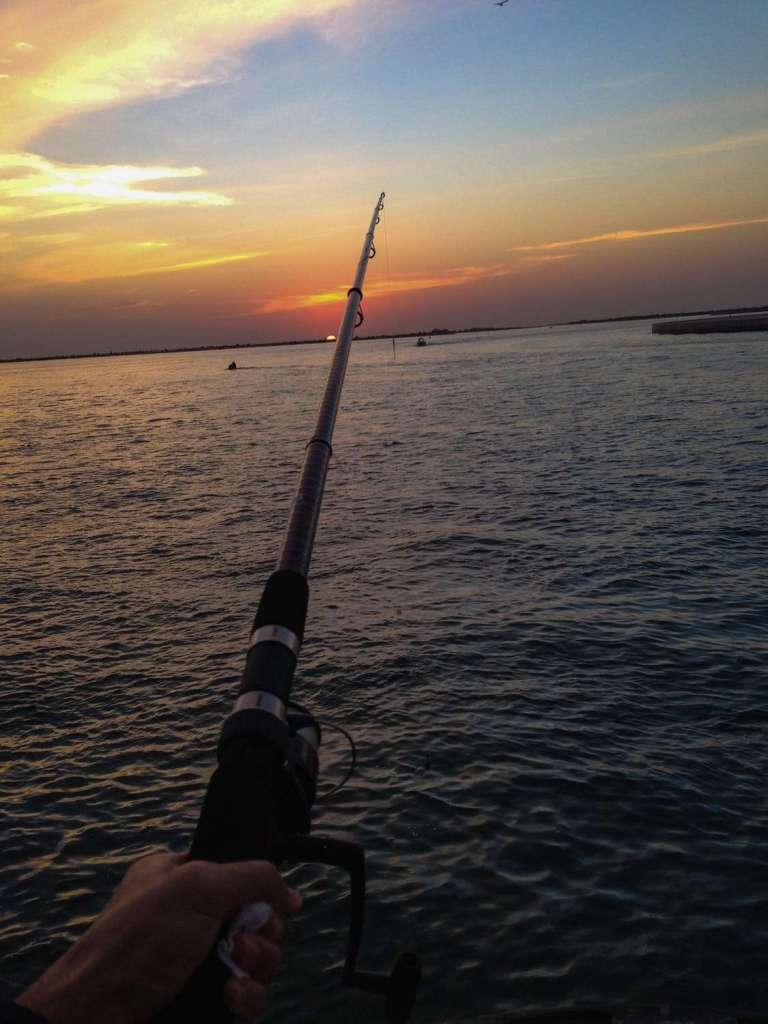 Do you need a license to fish in the state parks of Texas?