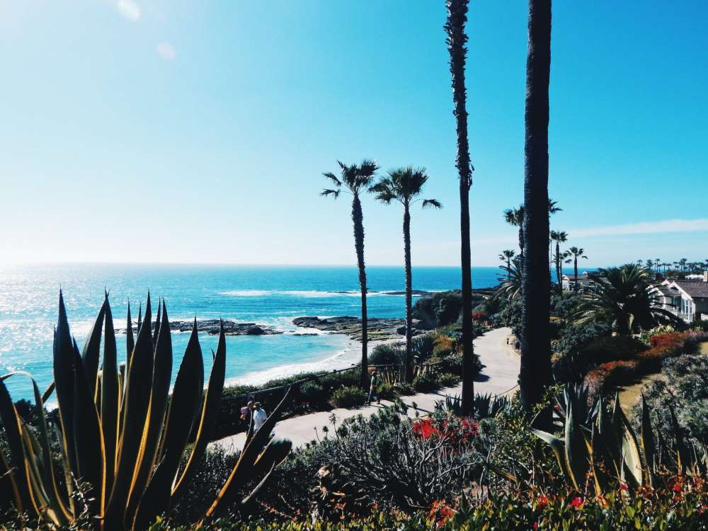 Things to do in California in June