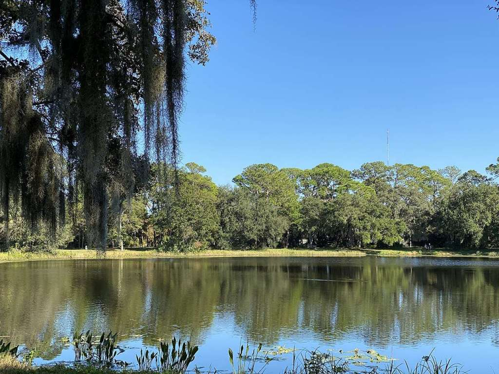 Lake Seminole - the clearest river in Florida