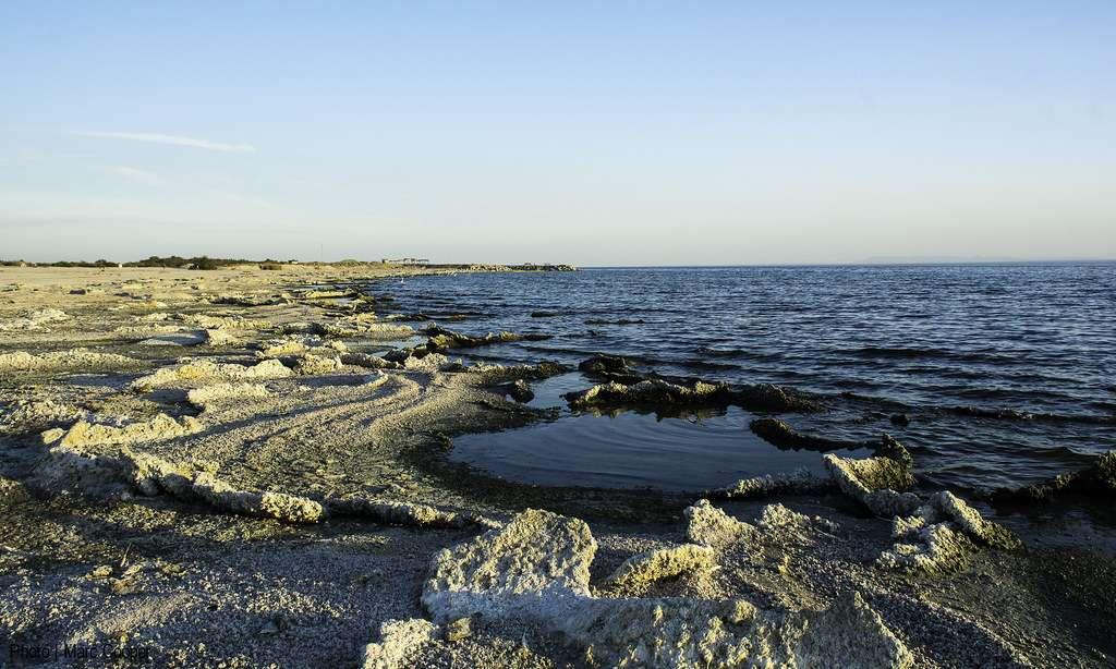 Salton Sea - a shallow, landlocked, highly-saline body of water