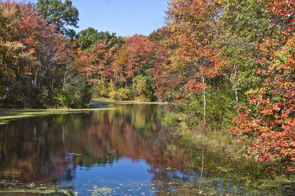 Acton Lake - recreation opportunities to generations of visitors
