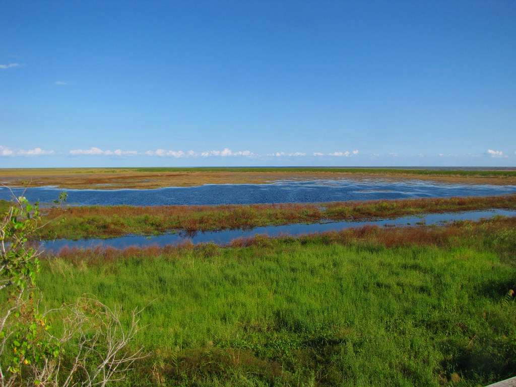 Lake Okeechobee - eighth largest natural freshwater lake in the US