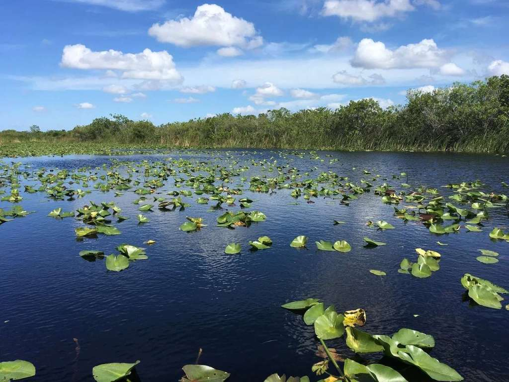 Lake Blue Cypress - the largest lake by volume in Florida