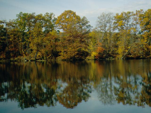 Lake Wilhelm - The shallowest lake in Pennsylvania
