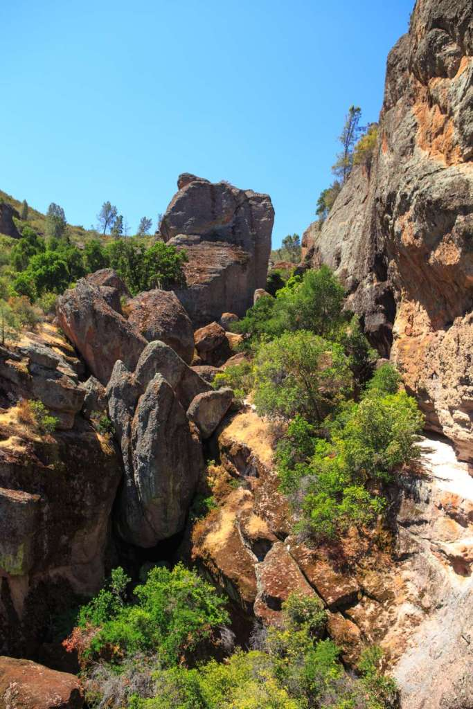 The Best Pinnacles Trails